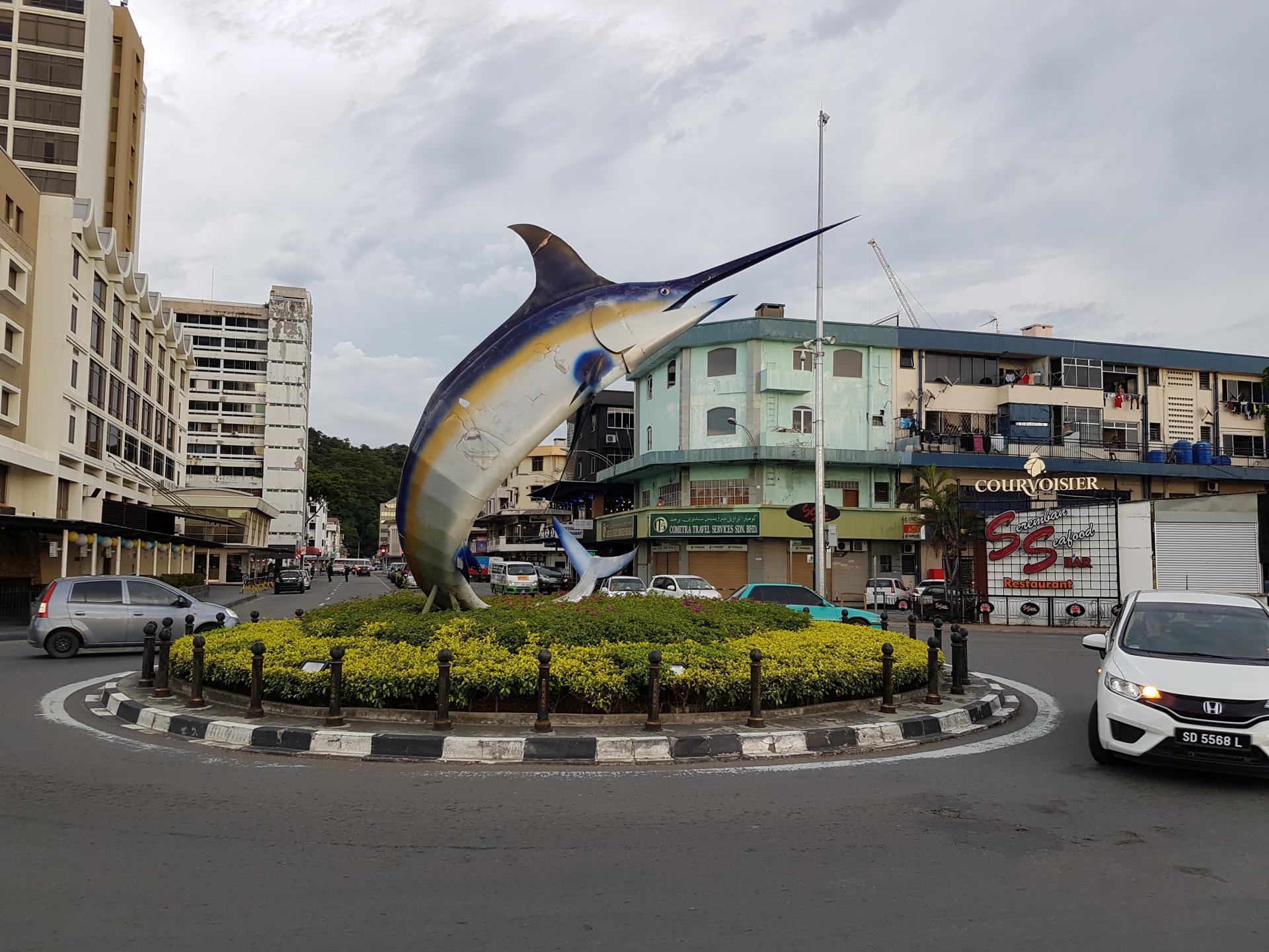 Рыба-меч Кота Кинабалу