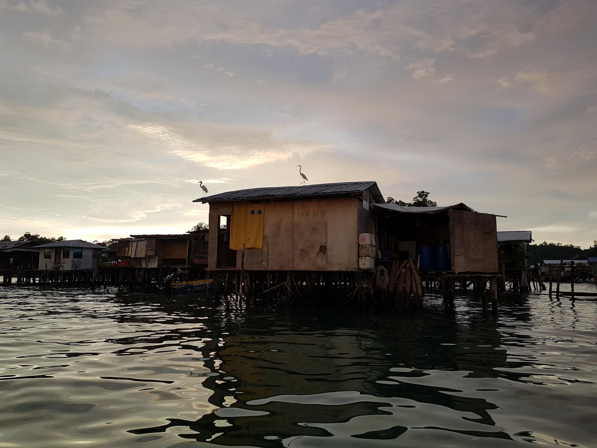 Остров Гайя