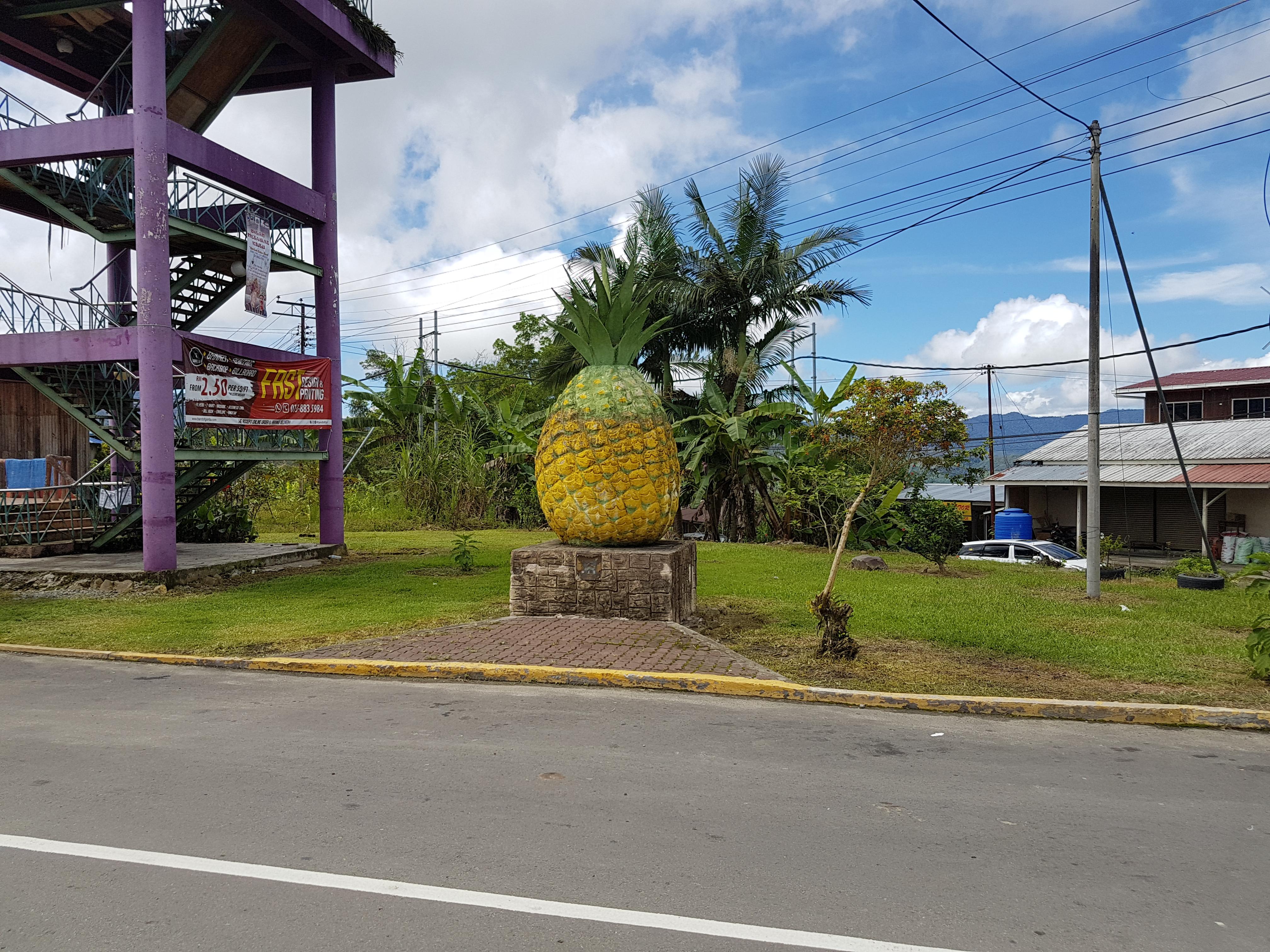 Каменный ананас