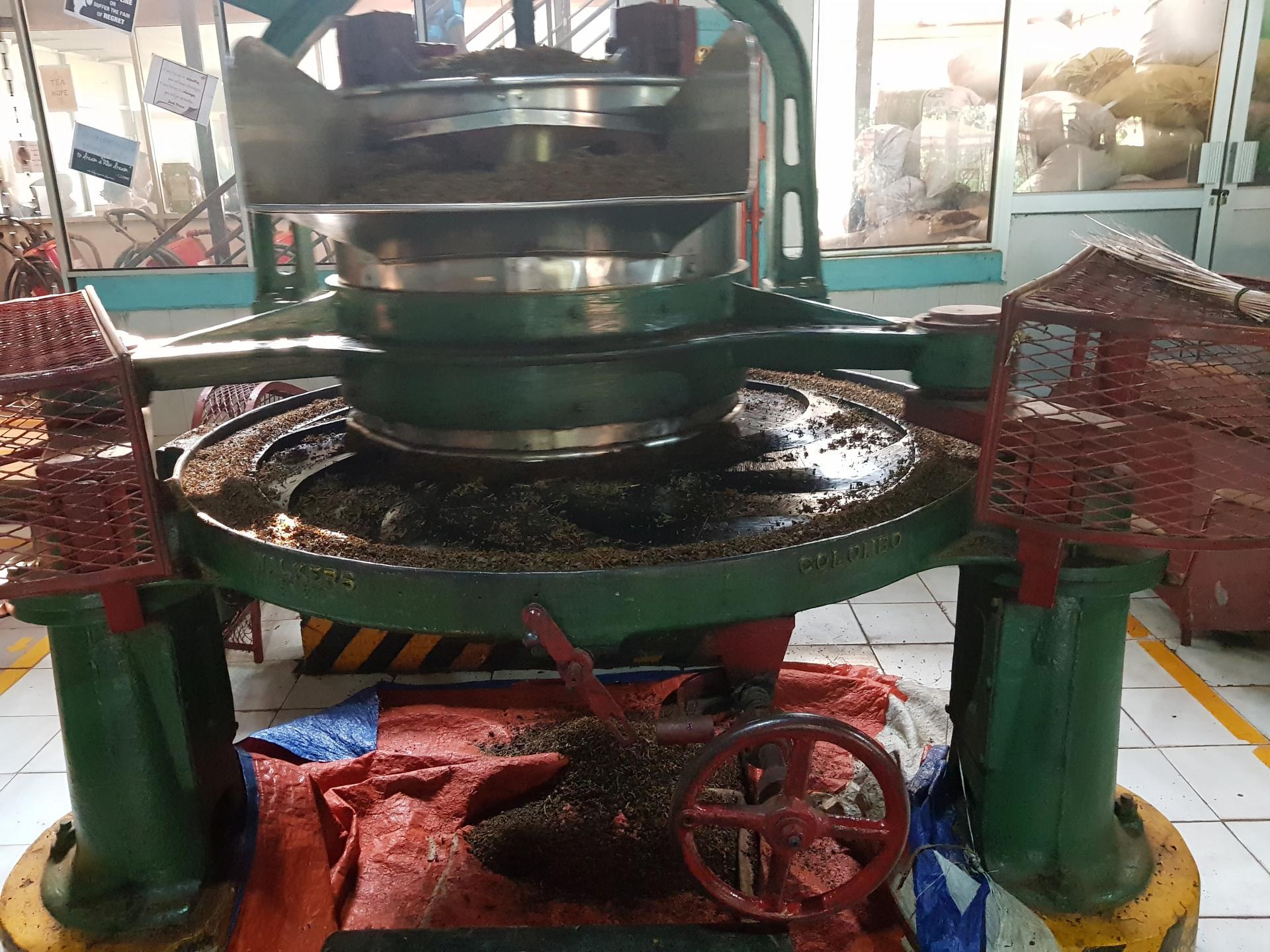 Станок для скручивания чайного листа на чайной фабрике в Канди, Шри-Ланка.