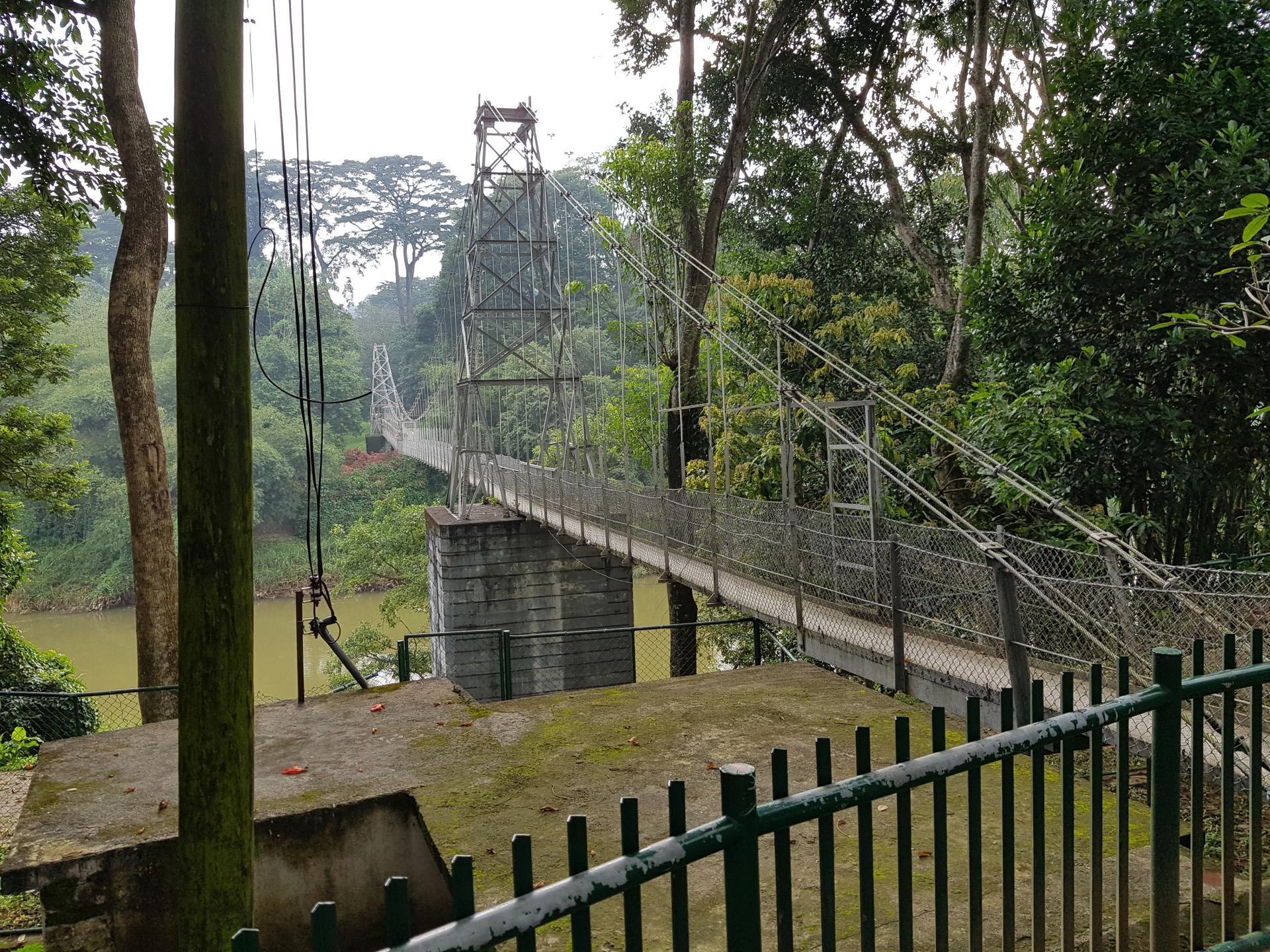 Мост в Ботаническом саду Канди, Шри-Ланка.