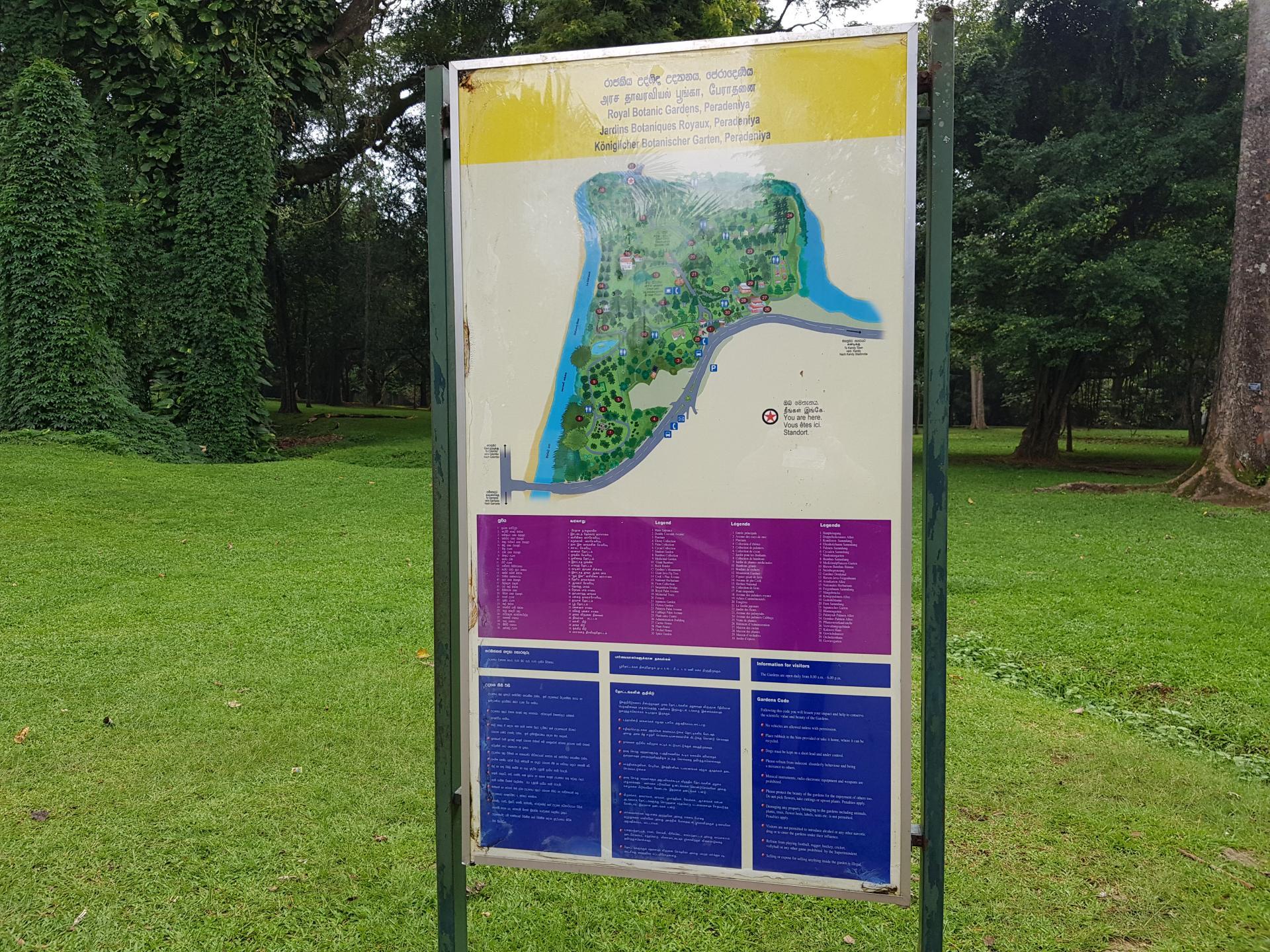 Щит-указатель в Ботаническом саду Канди, Шри-Ланка