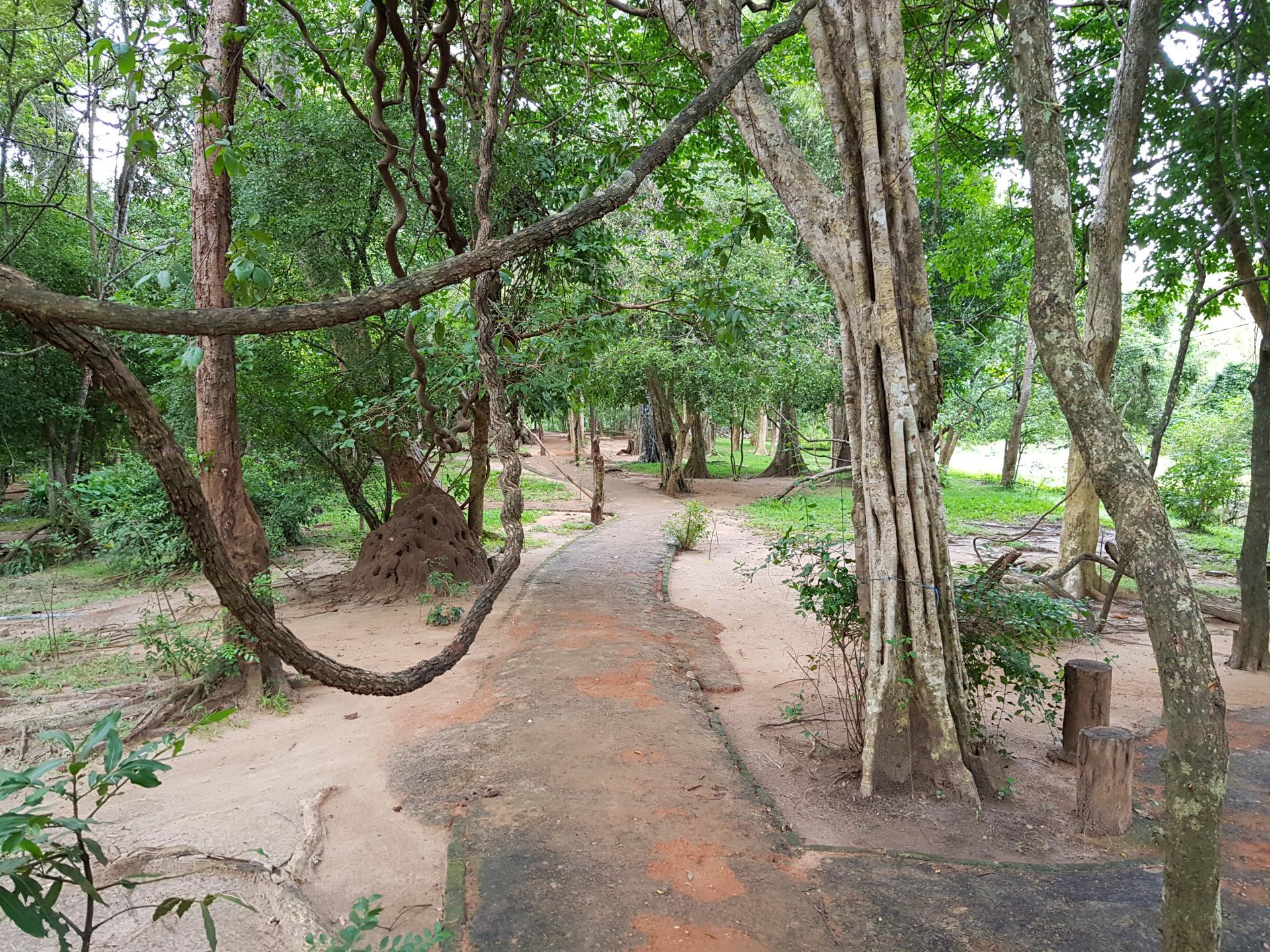 Национальный парк Сигирия, Шри-Ланка