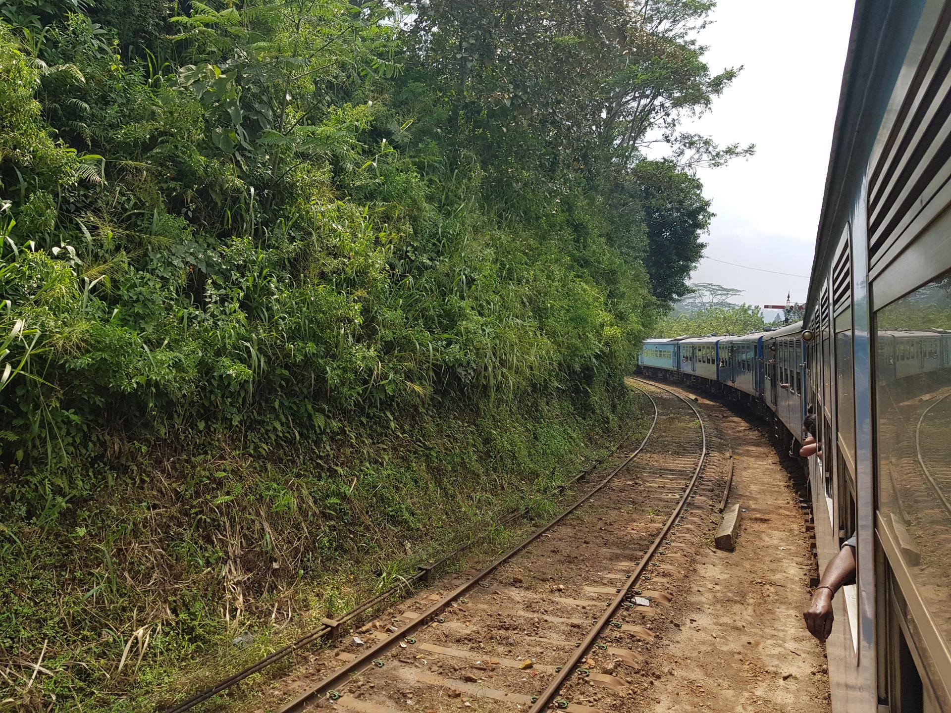 Вид из поезда на железную дорогу, Шри-Ланка