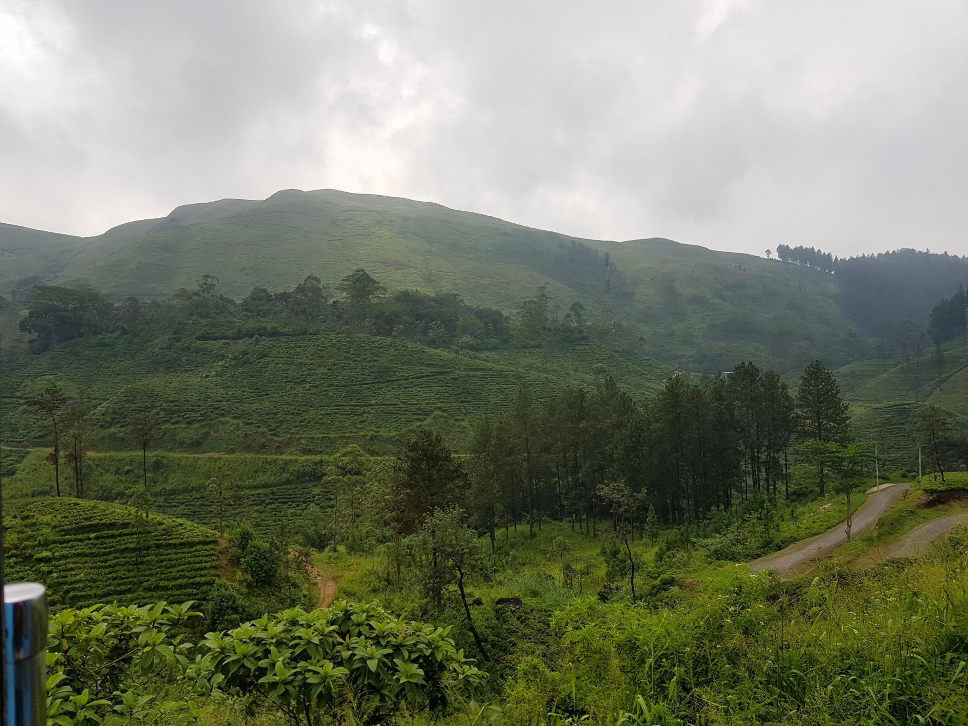 Вид из поезда, Шри-Ланка.