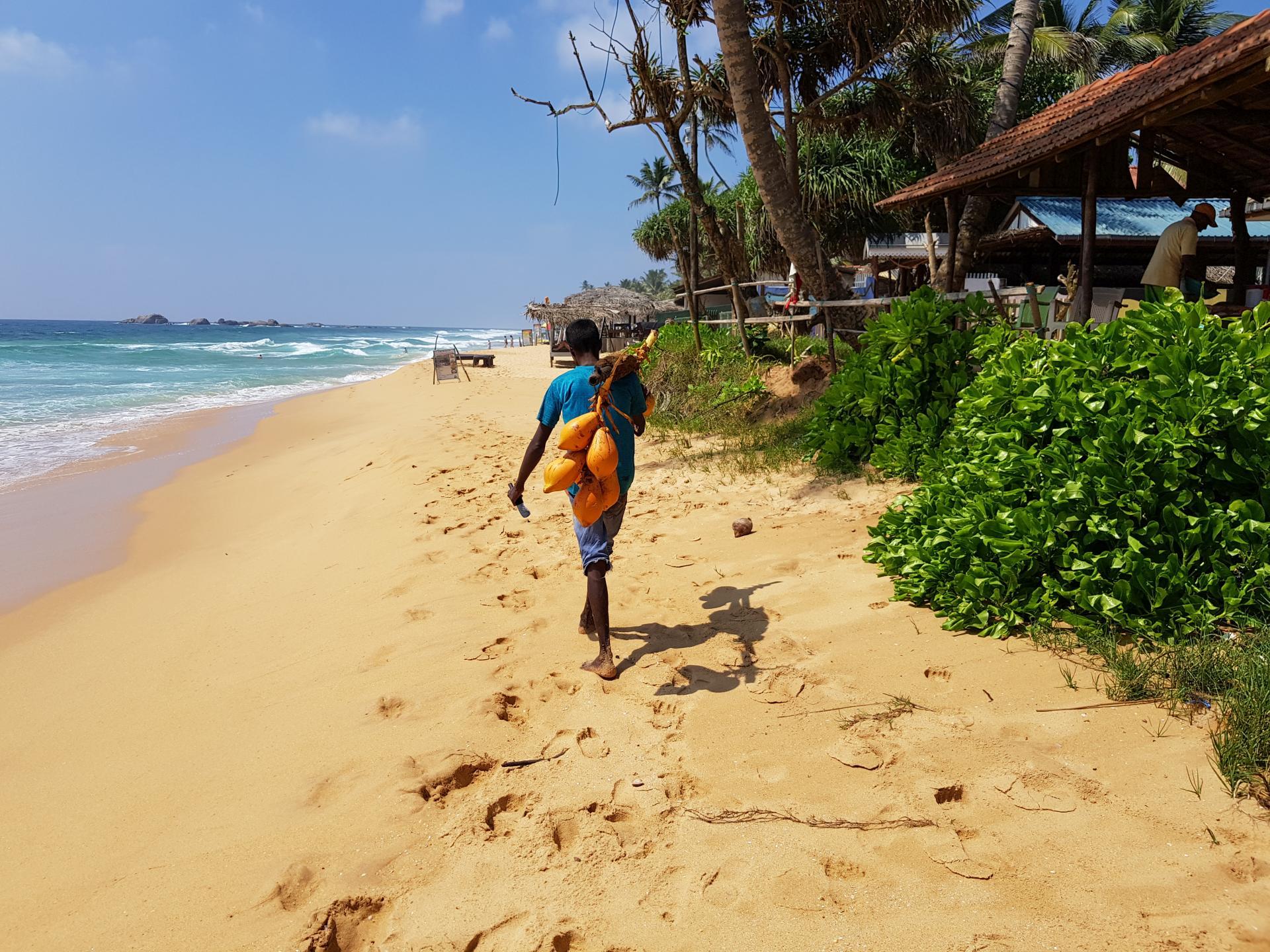 Ланкиец на пляже в Хиккадува, Шри-Ланка.