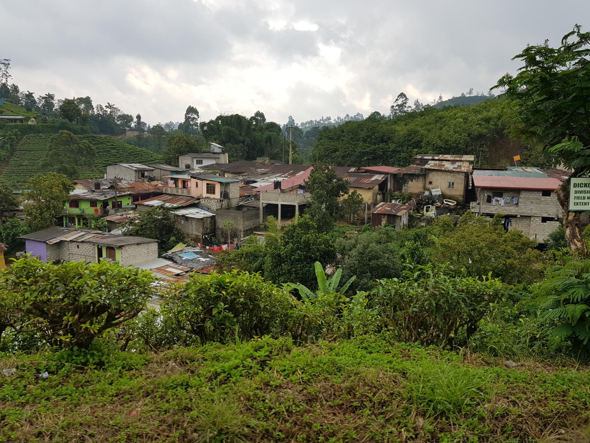 Лачуги бедняков, Хаттон, Шри-Ланка