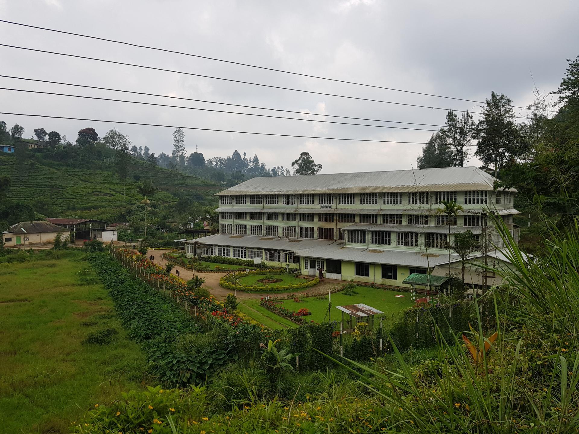 чайная фабрика, Хаттон, Шри-Ланка