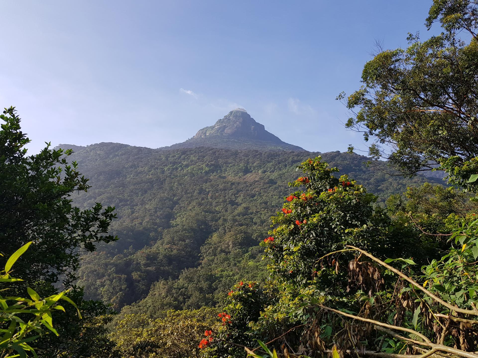 Пик Адама, Шри-Ланка.