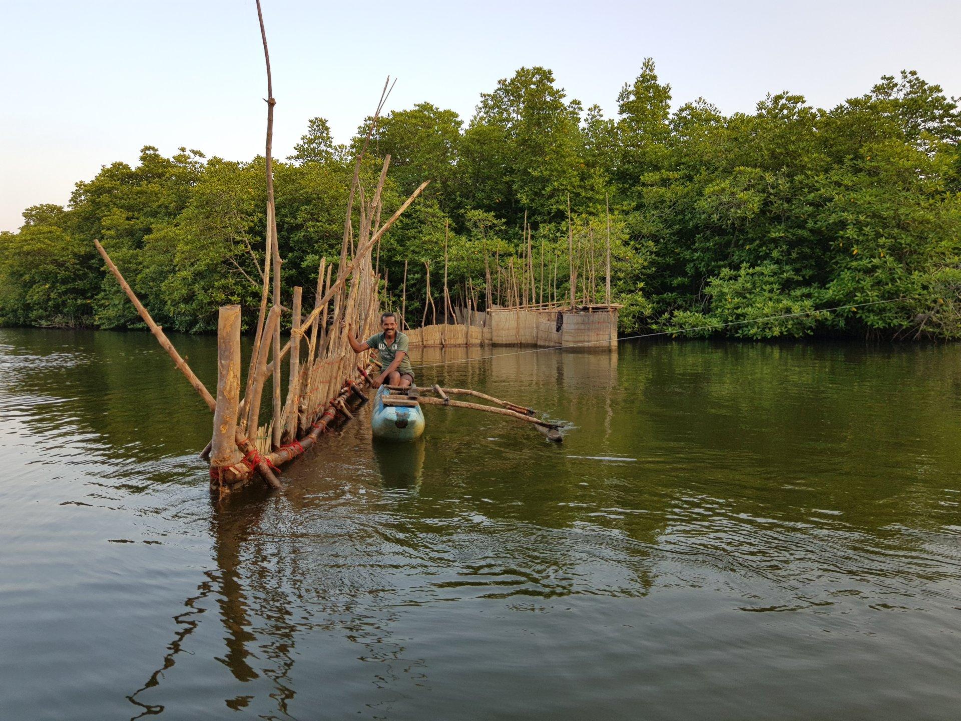 Рыбак-ланкиец