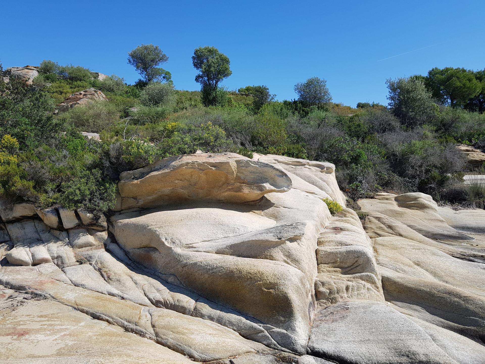 каменистый берег с травой