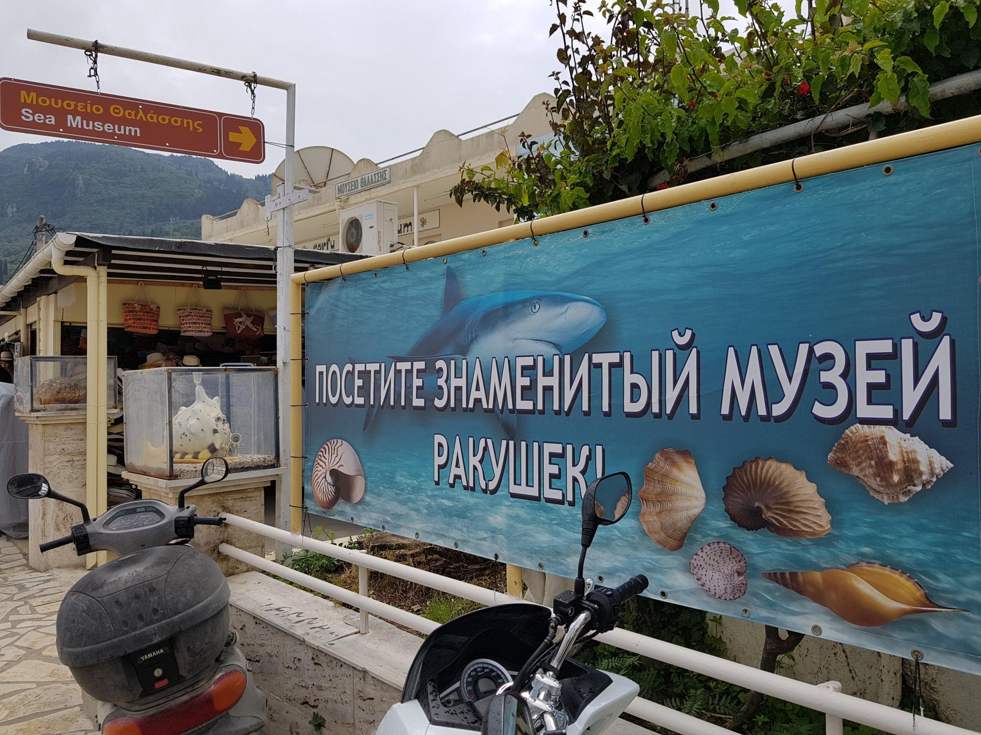 музей ракушек, Бенитсес