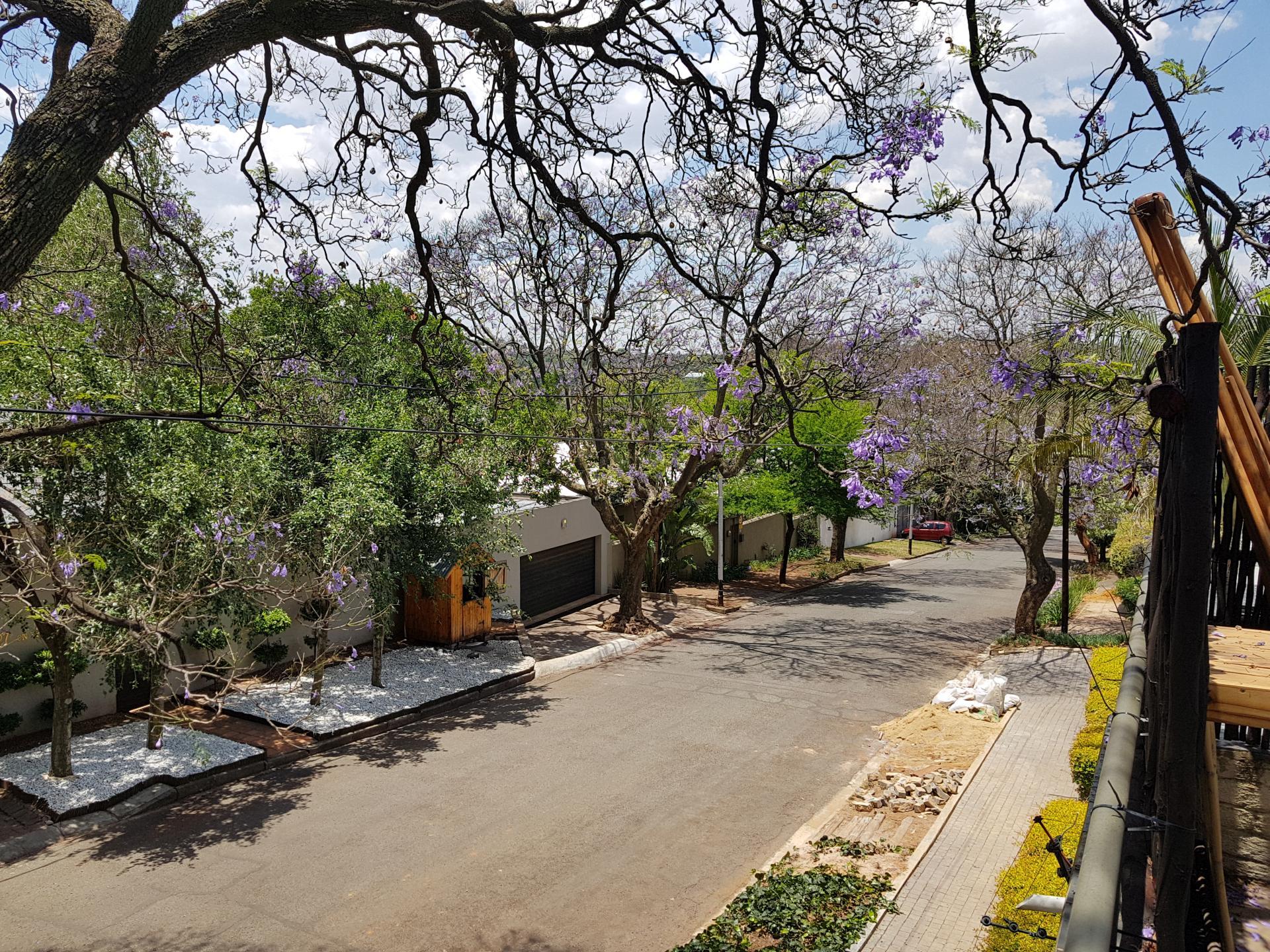 улица в Йоханнесбурге