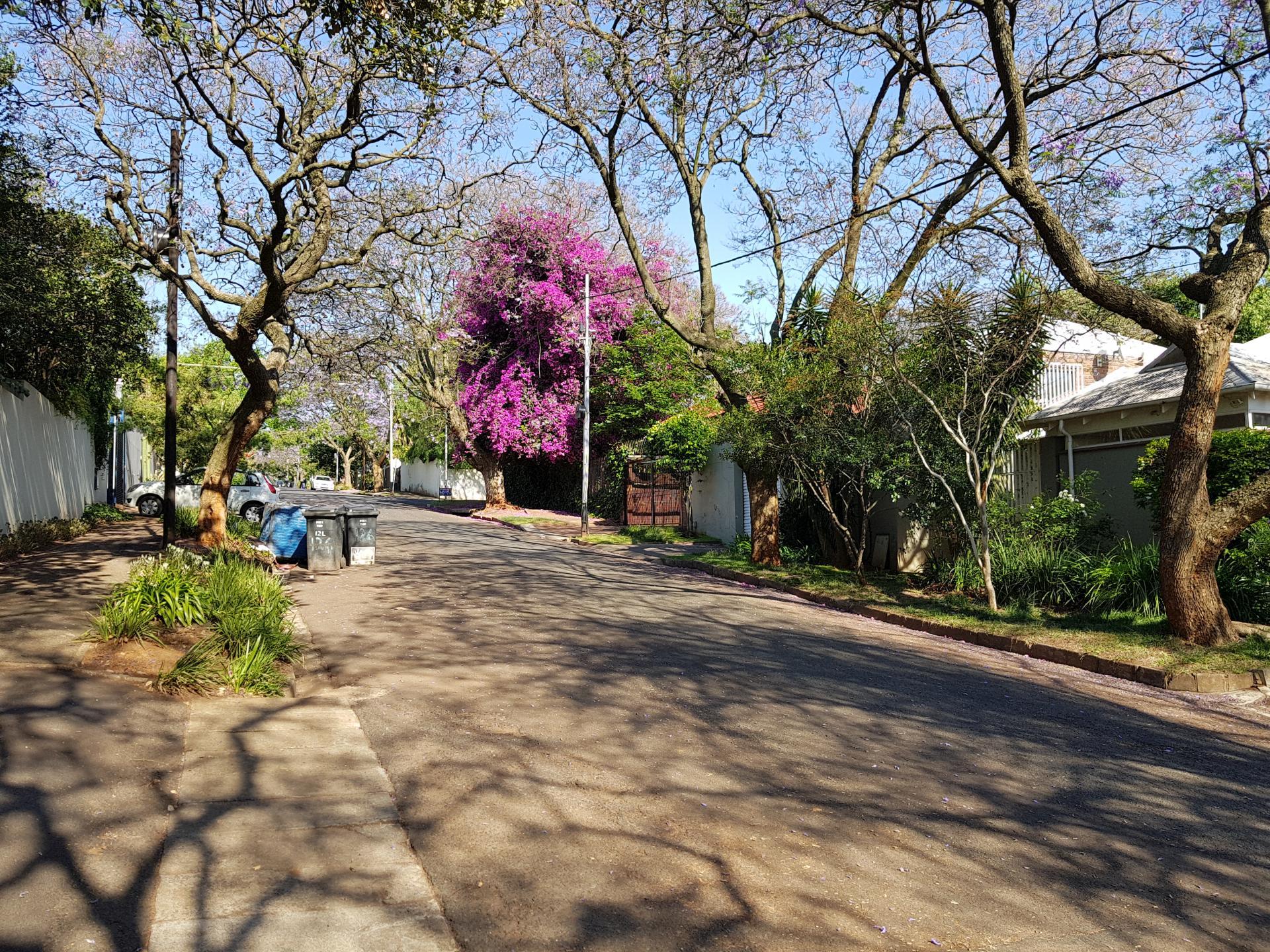 2 Авеню Мелвилл, Йоханнесбург