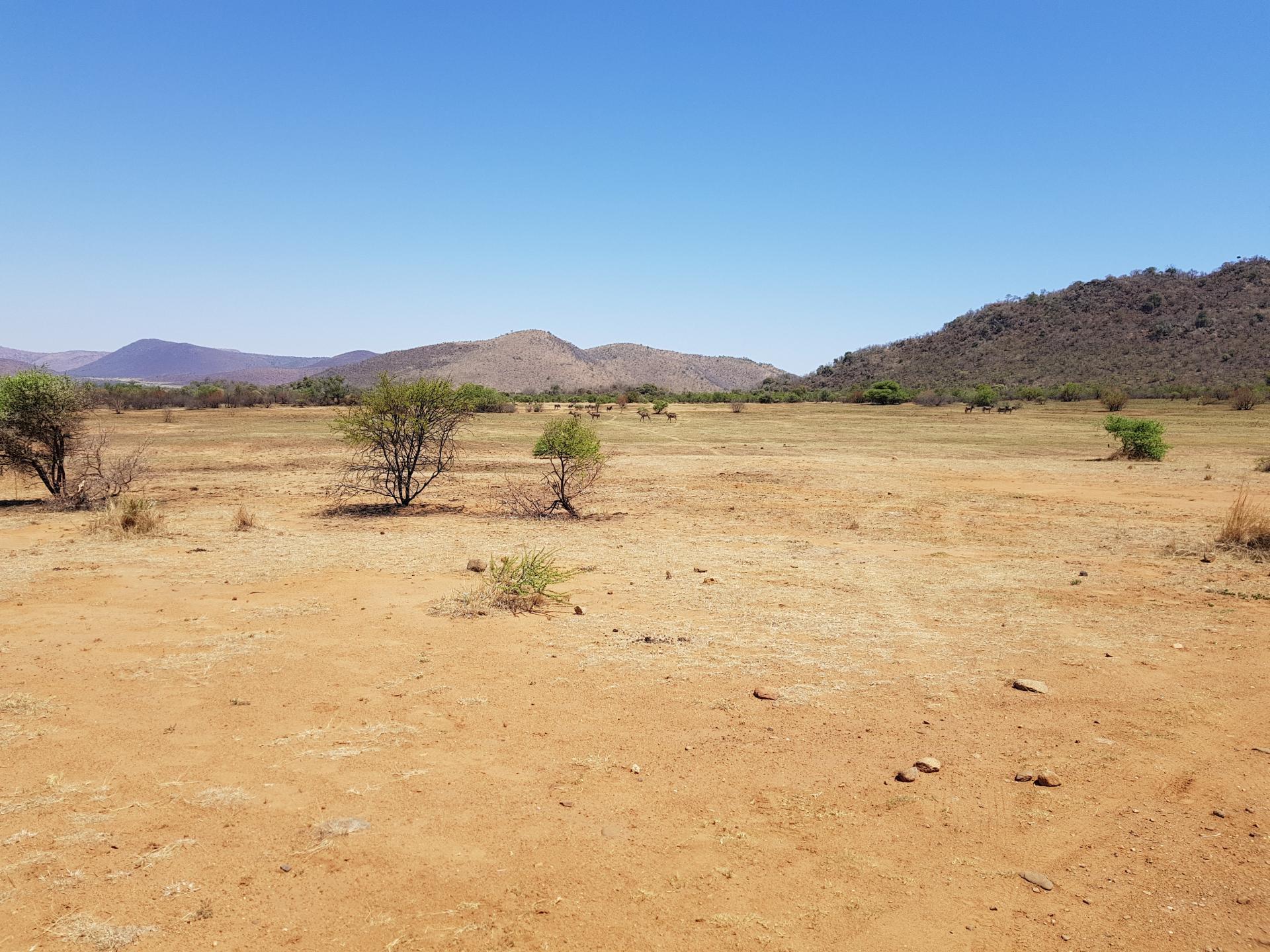 африканский ландшафт