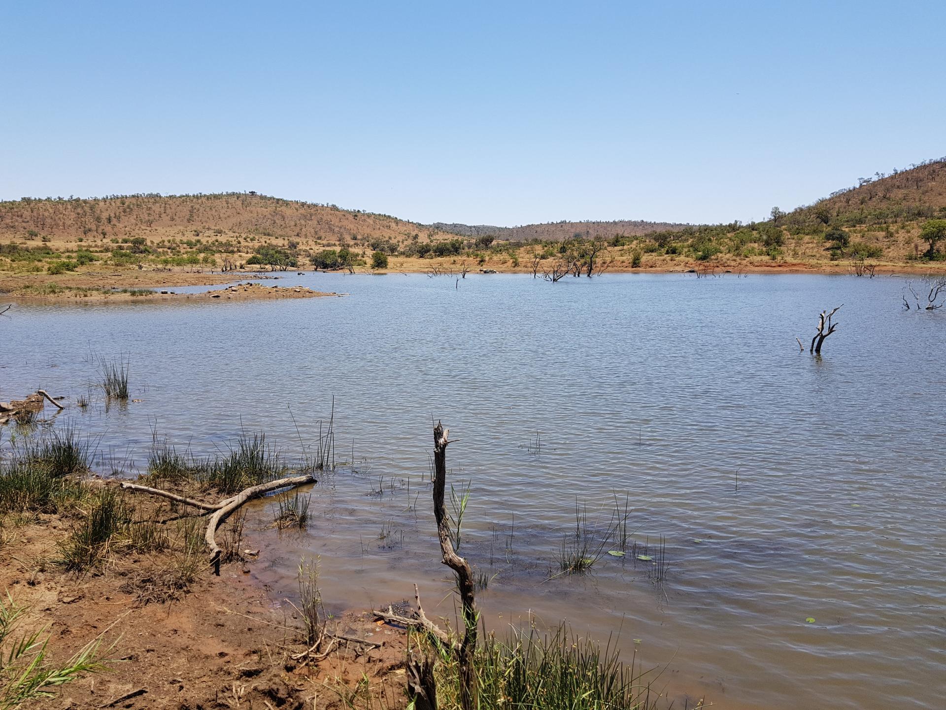 озеро в парке Пиланесберг