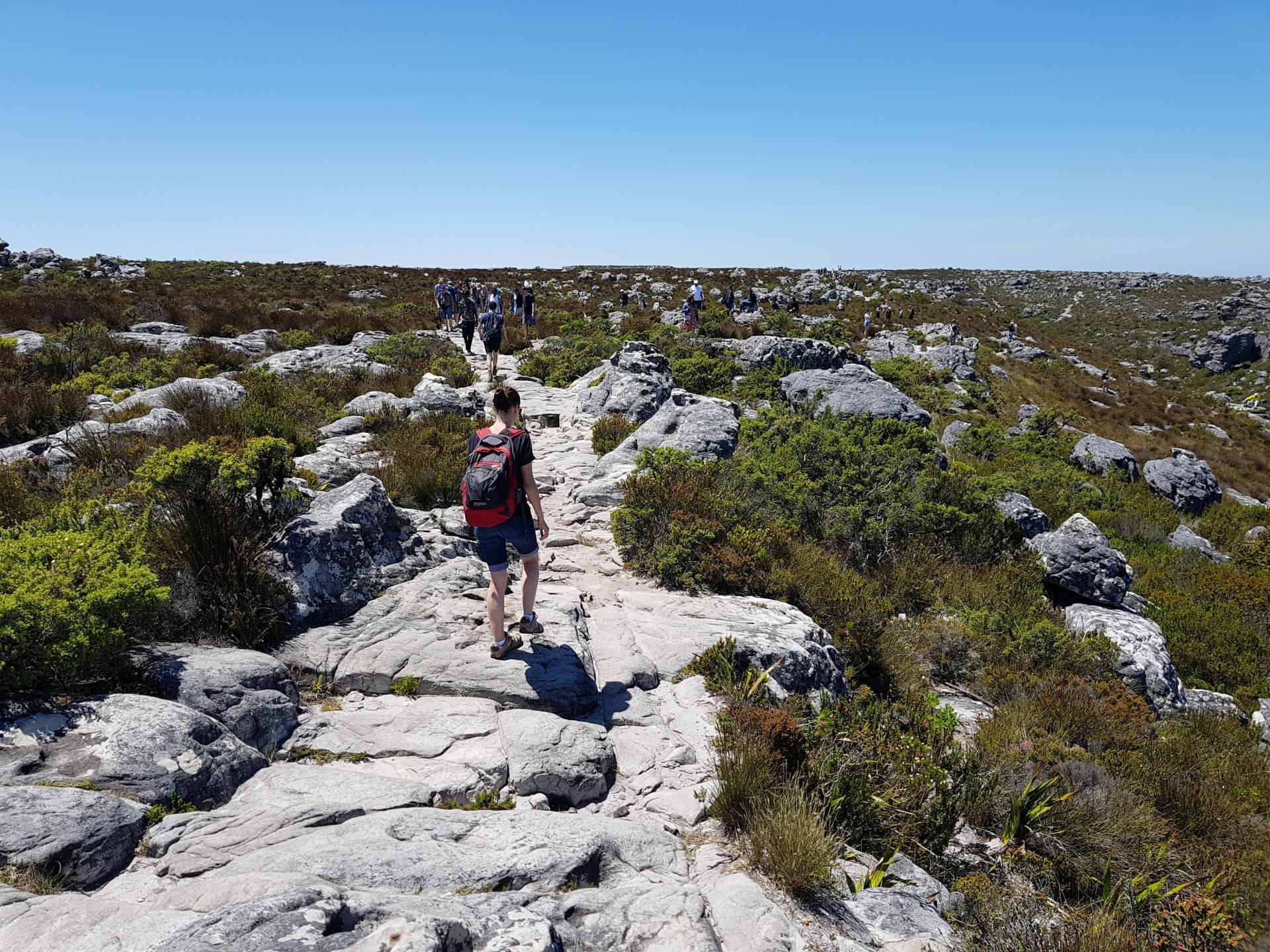 каменные тропки на вершине Столовой горы