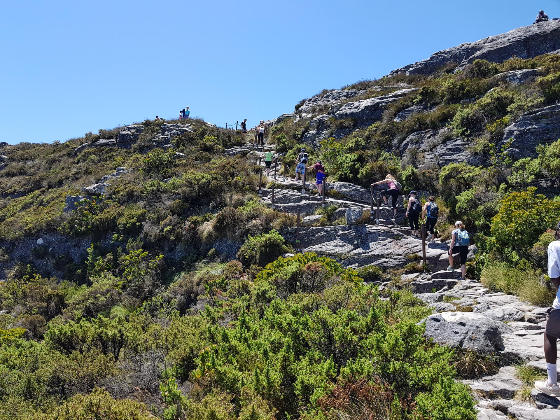 Люди на вершине Столовой горы, Кейптаун
