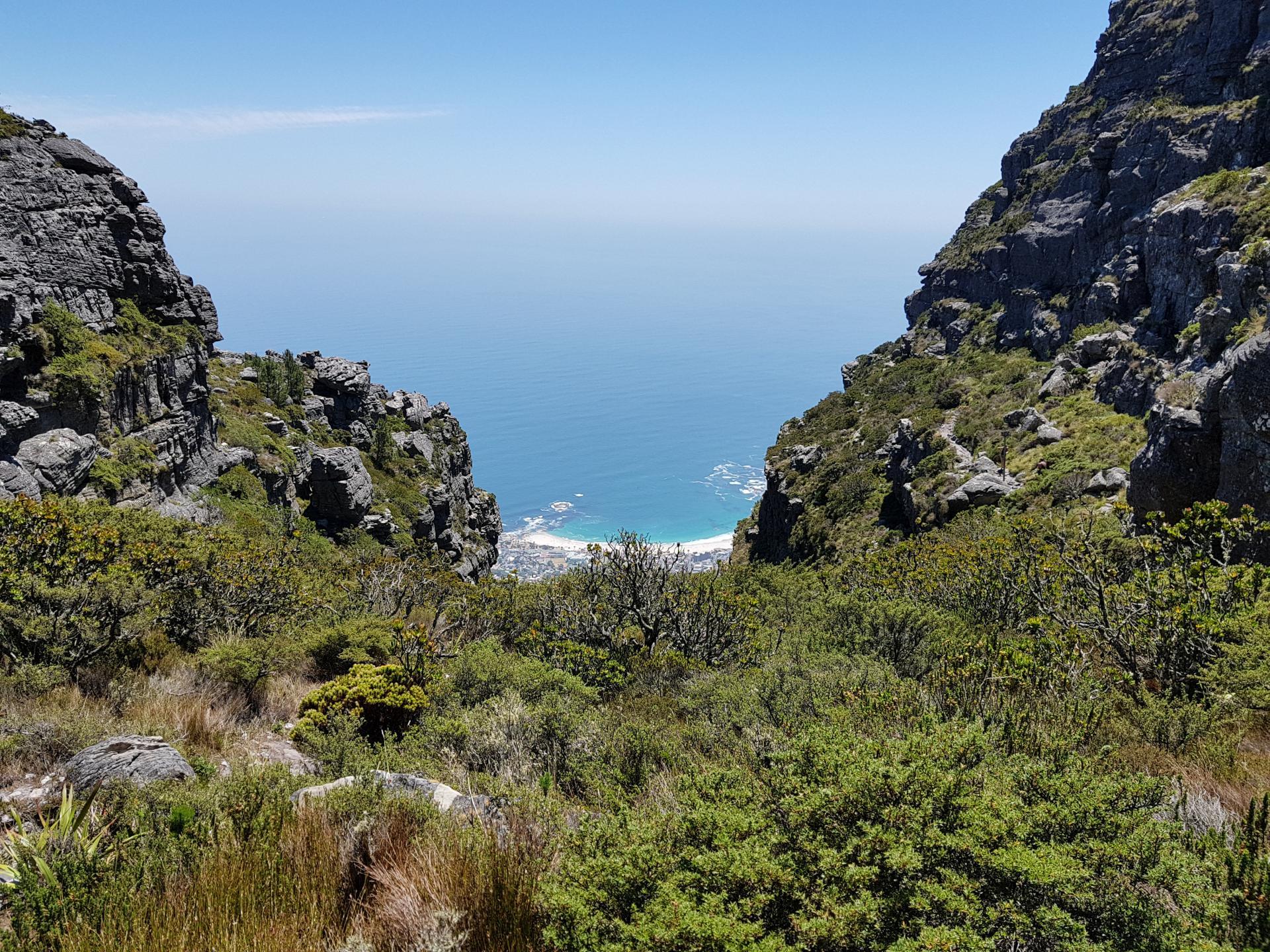 вид на океан и пригород Кейптауна со Столовой горы