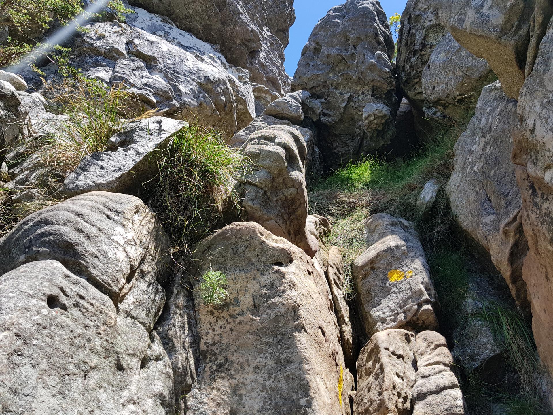 каменный уступ на тропе Столовой горы, Кейптаун