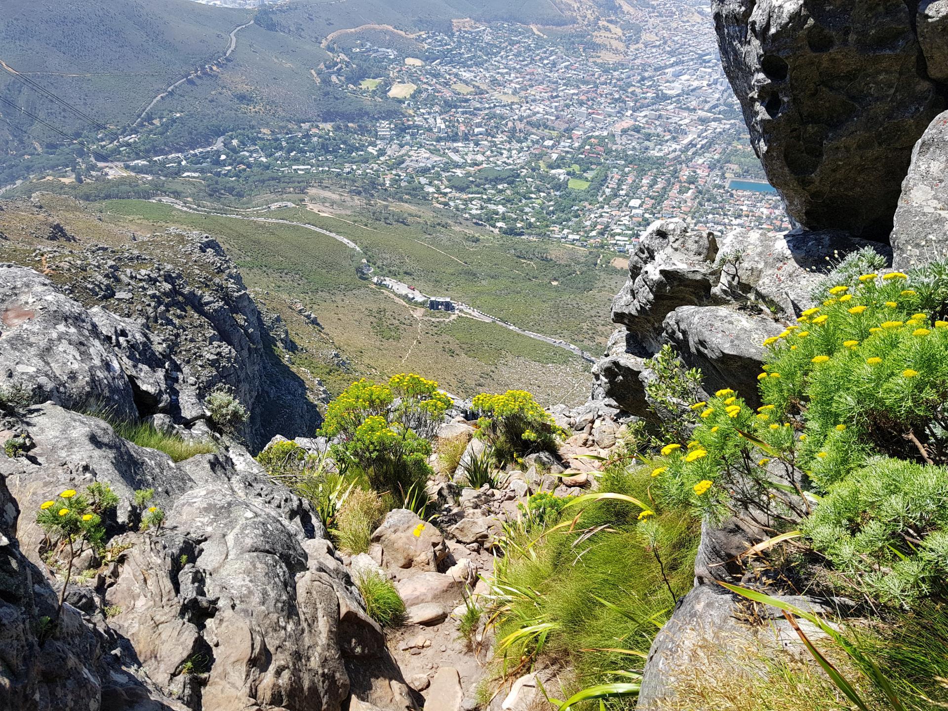 нижняя будка фуникулера Столовой горы