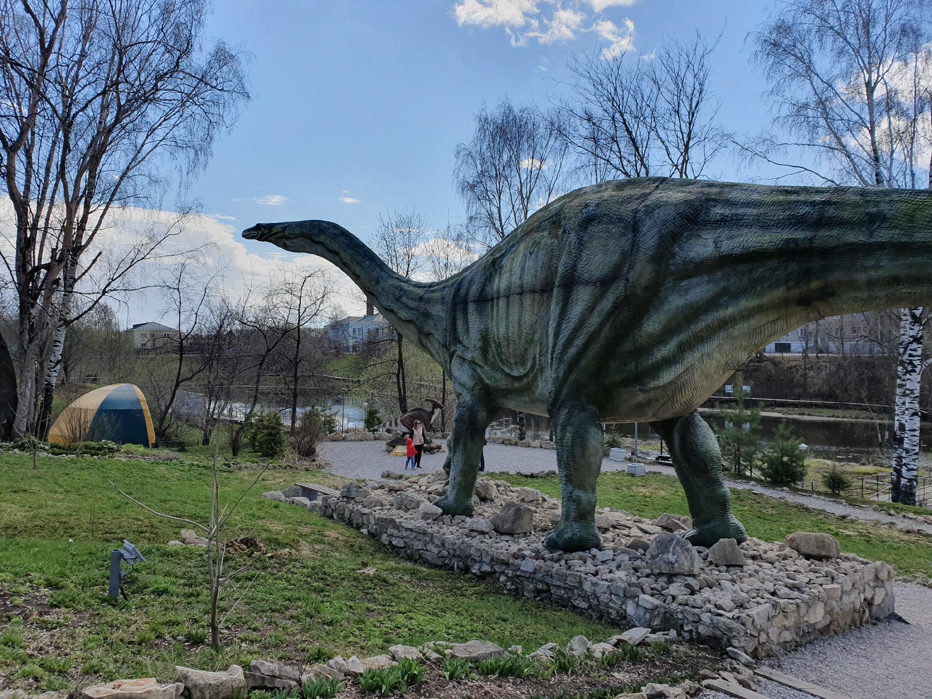 Апатозавр в динопарке