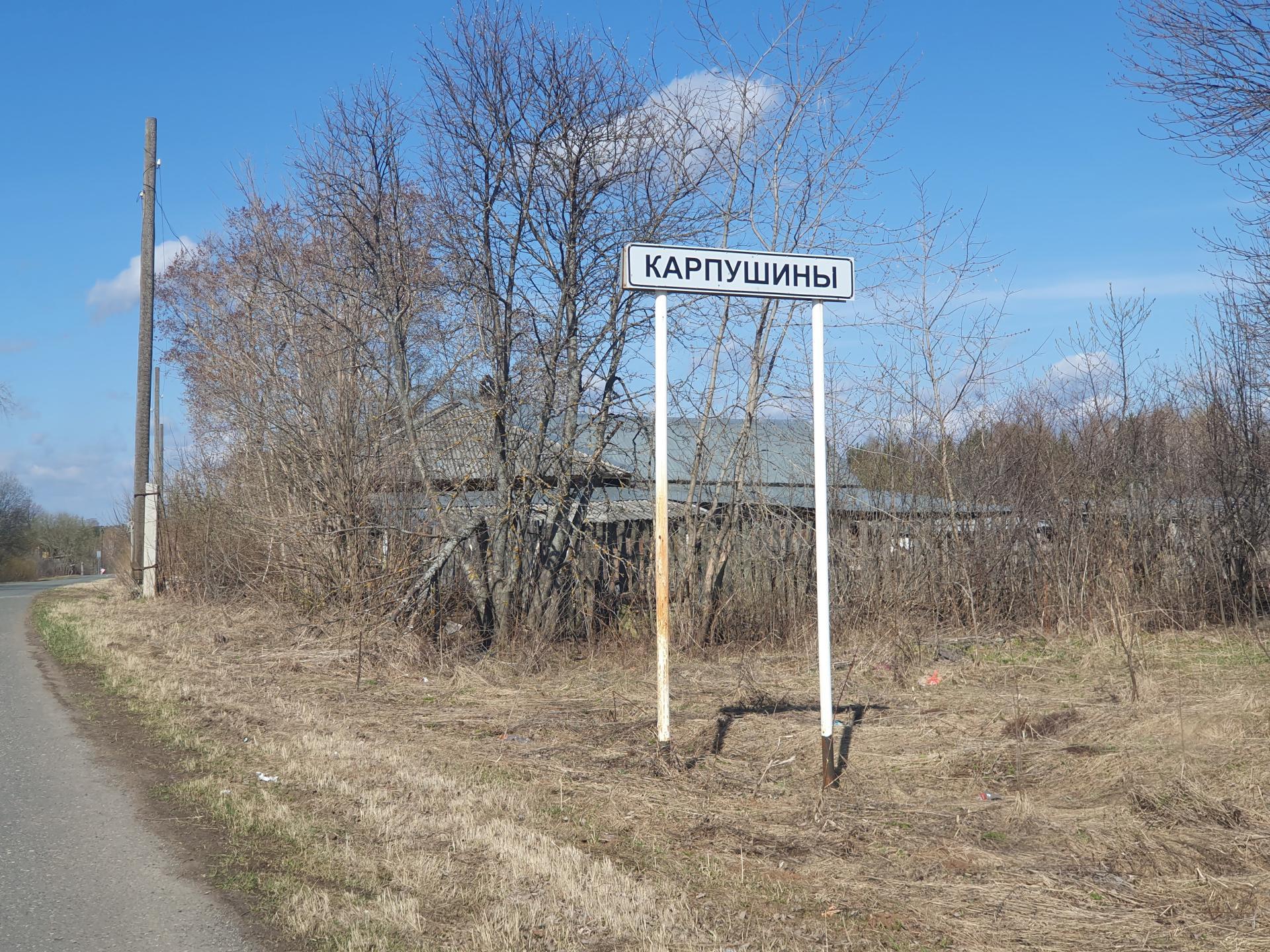 деревня Карпушины