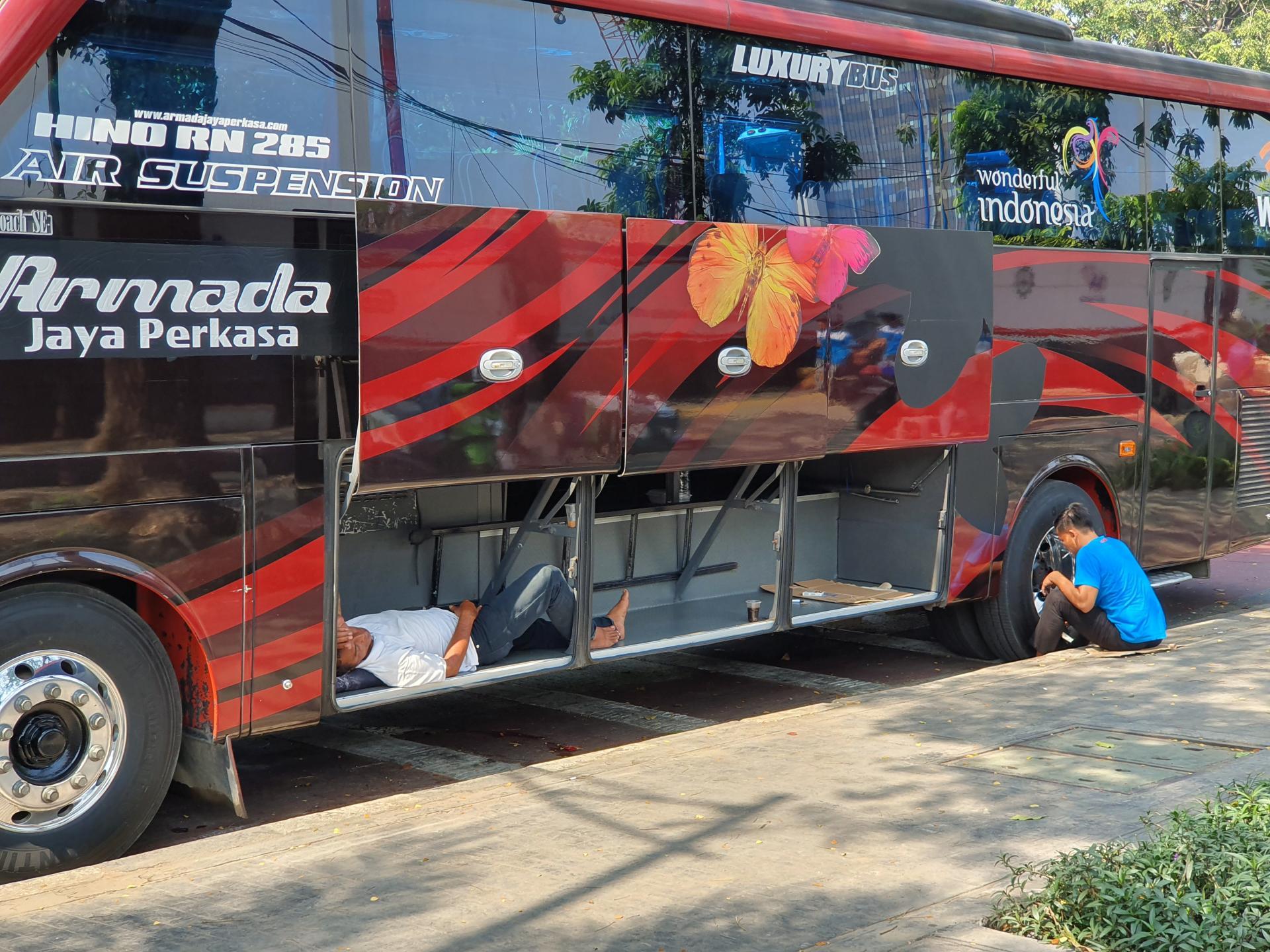 водитель автобуса спит в багажном отделении