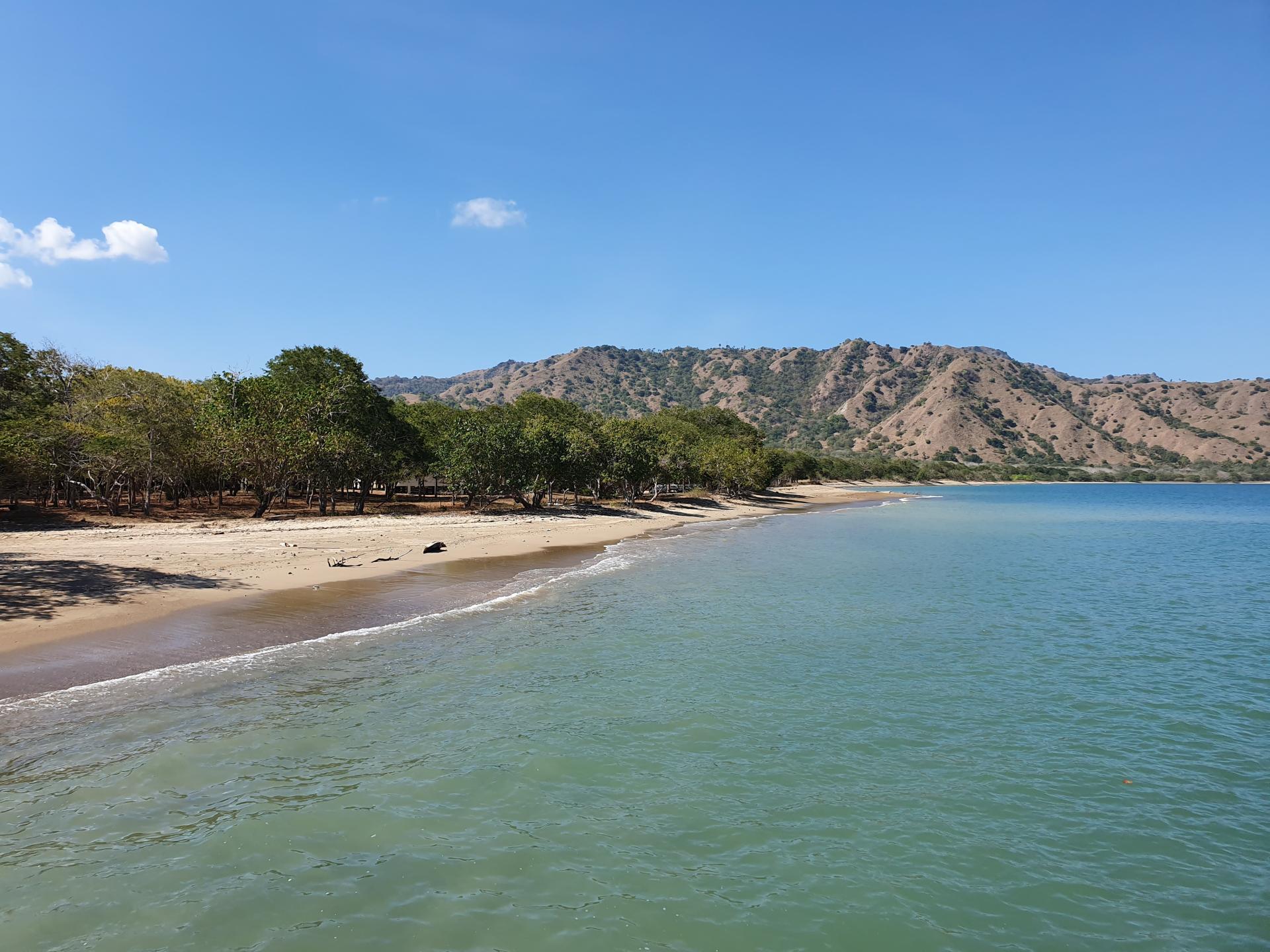 берег острова Комодо