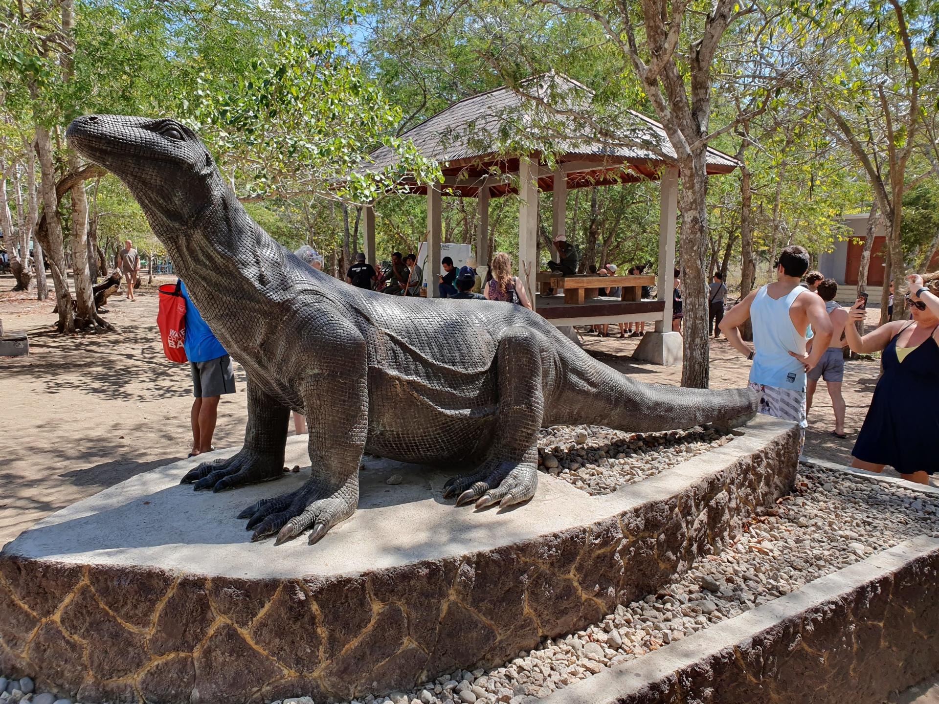 каменный варан в национальном парке Комодо
