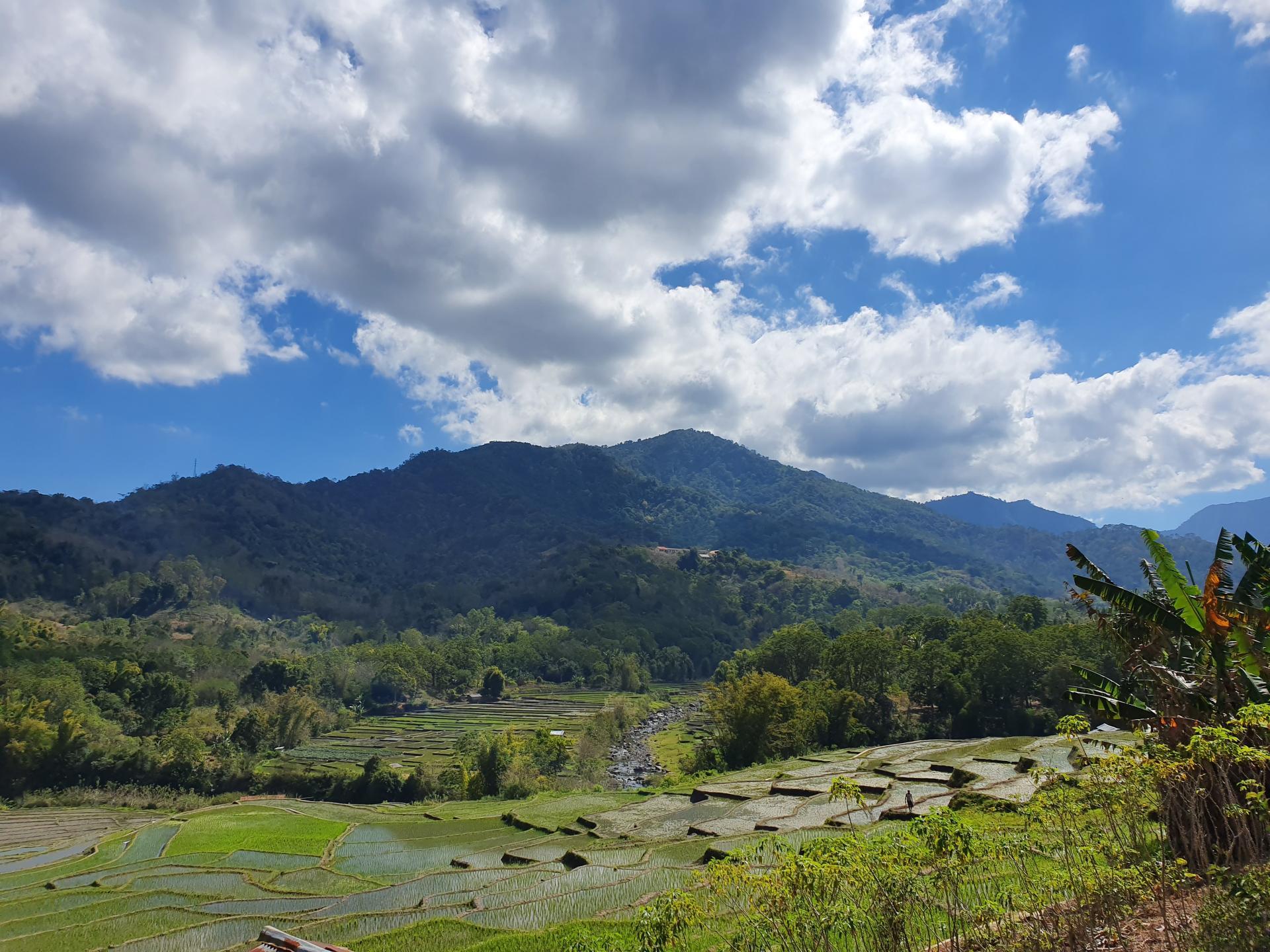 природа в окрестностях вулкана Келимуту