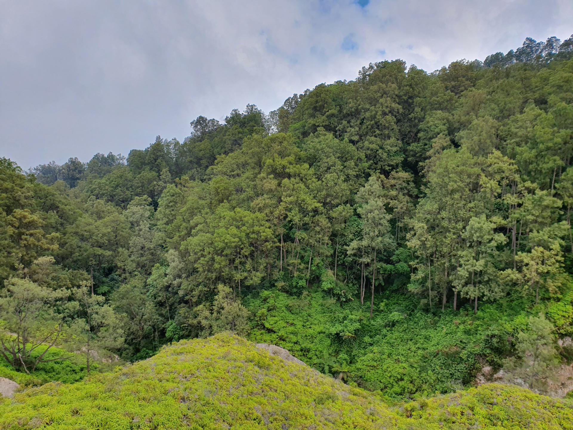 природа парка Келимуту