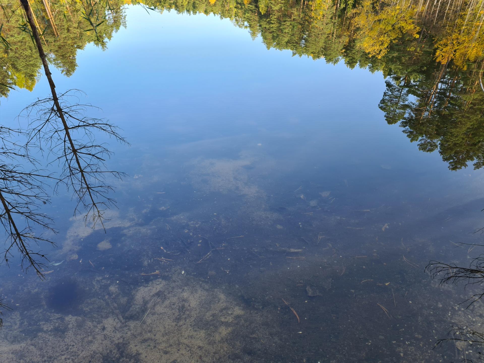 вода в озере Чваниха