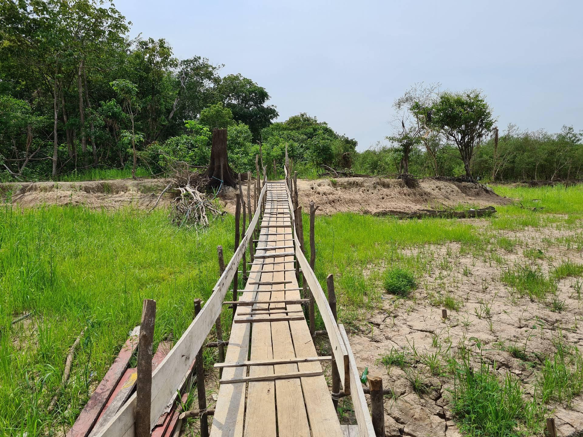 на берегу Амазонки