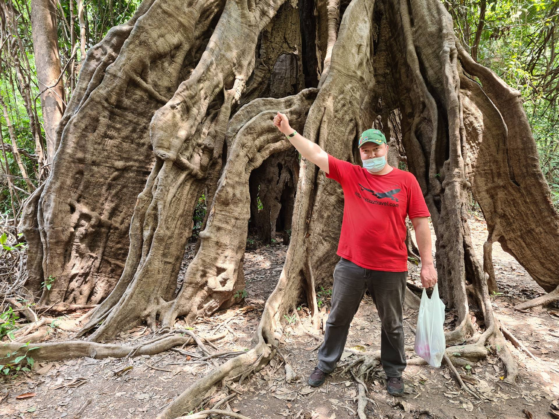 Вятский Лапоть со стволом огромного дерева в Бразилии