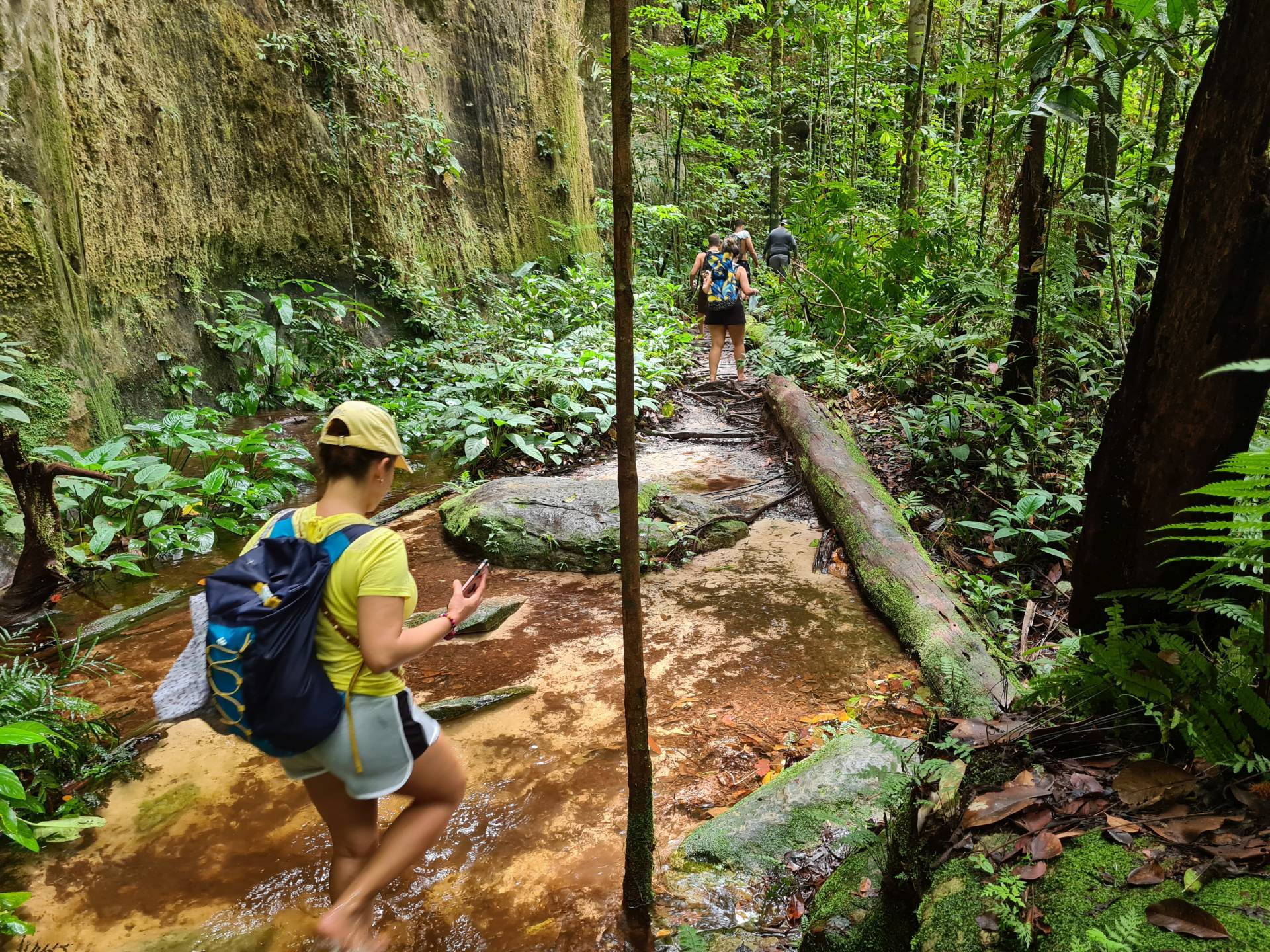 в джунглях Бразилии