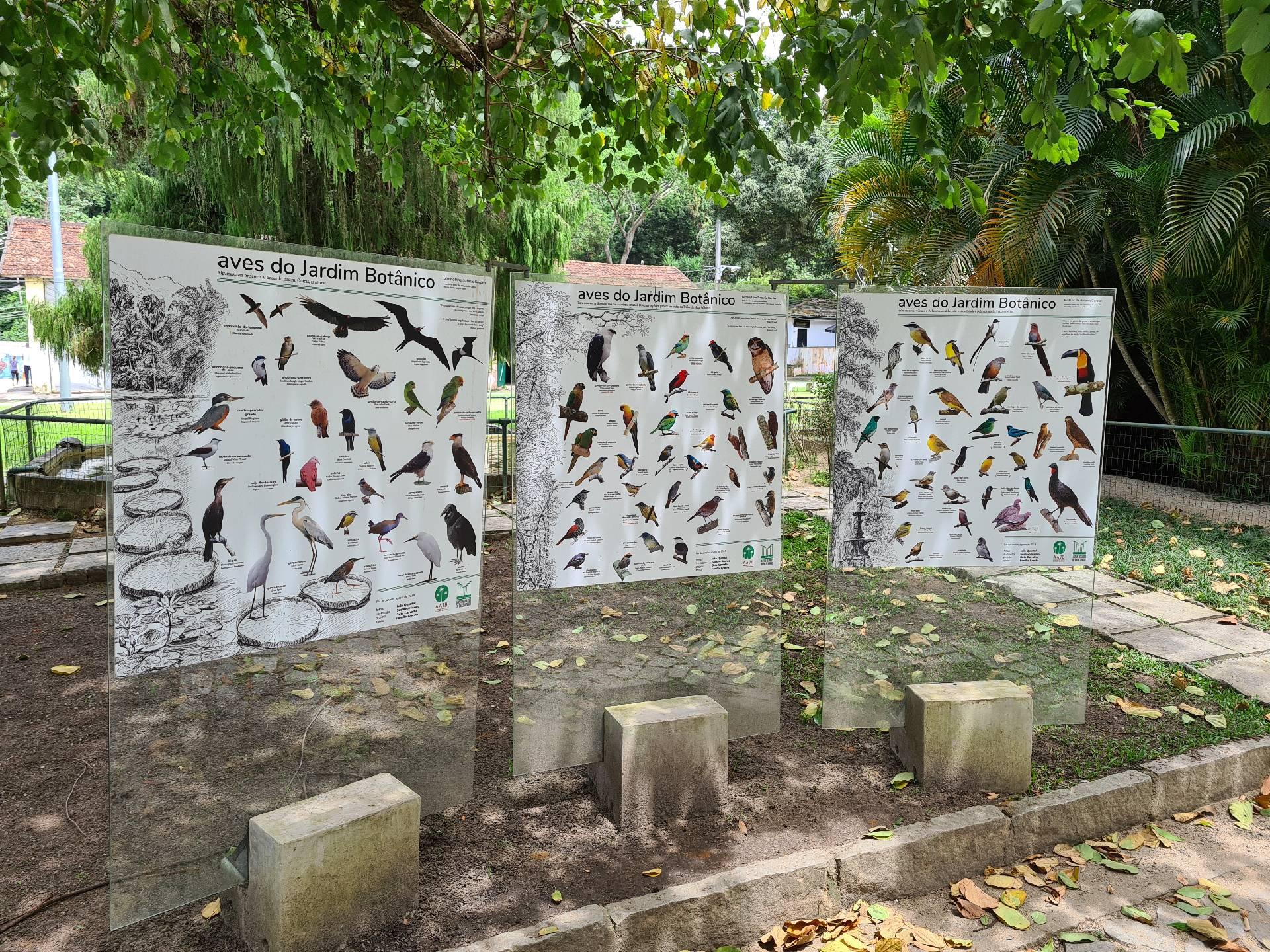 стенд с птицами ботанического сада Рио