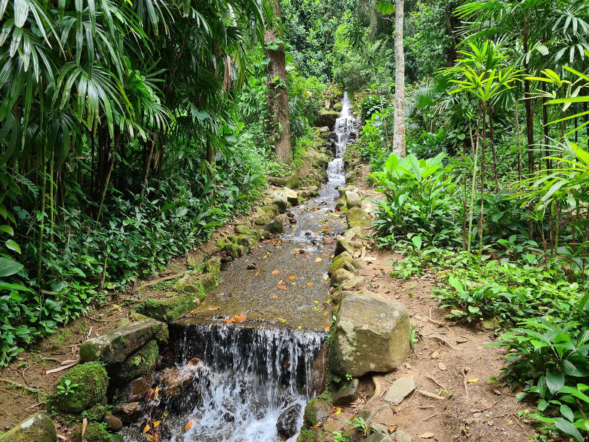 искусственный водопад в ботаническом саду Рио-де-Жанейро
