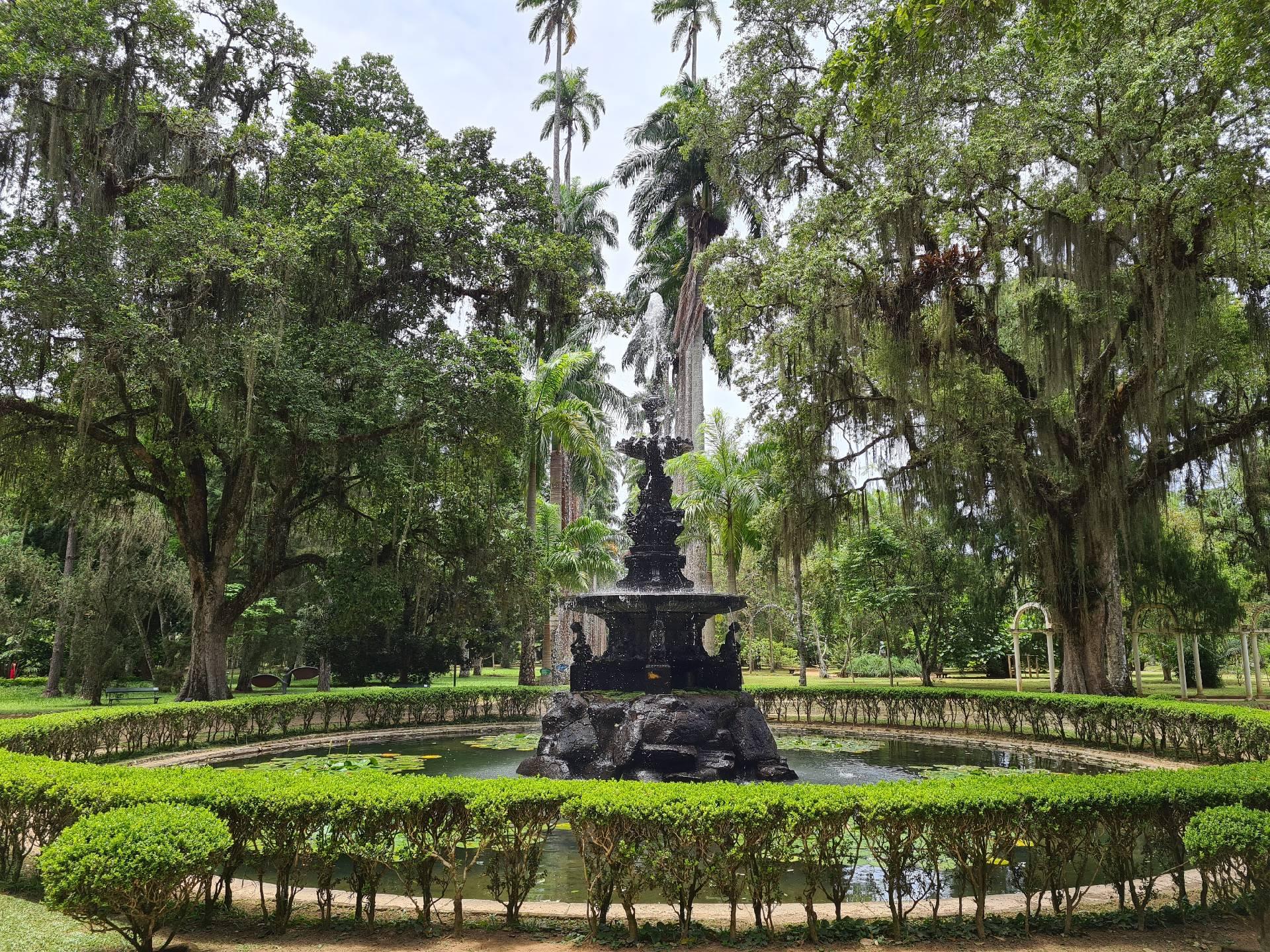 фонтан в ботаническом саду Рио-де-Жанейро