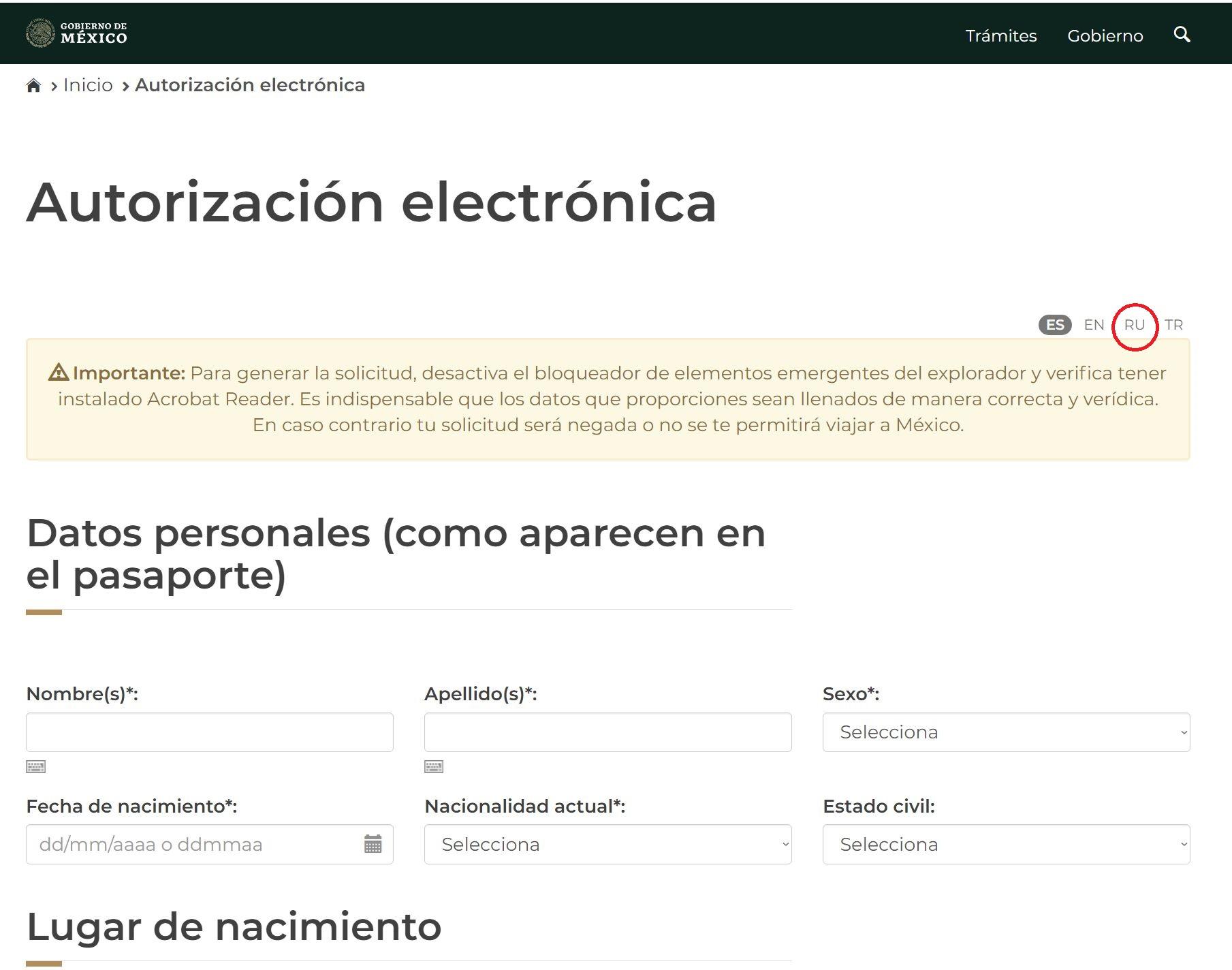 электронная форма в Мексику